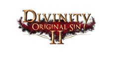 Divinity: Original Sin 2 mit Split Screen und Controller Support