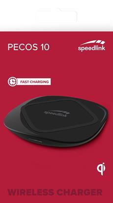 PECOS 10