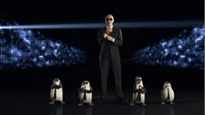 """Elite-Undercover-Interspezial-Sonderkommando """"DIE PINGUINE AUS MADAGASCAR"""" durch Pitbull verstärkt!"""