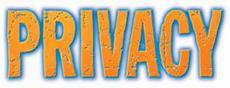 Fan-Aufruf bringt über 700 Einsendungen für neues Privacy-Spiel!